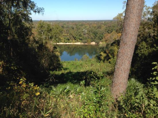 Torreya State Park: View from above the river.