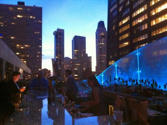 The Ritz-Carlton, Chicago : Great rooftop bar! Try the Tuna tatare!!!