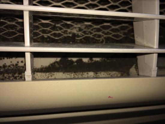 Comfort Inn Goshen: Mold in the heater/Ac vent