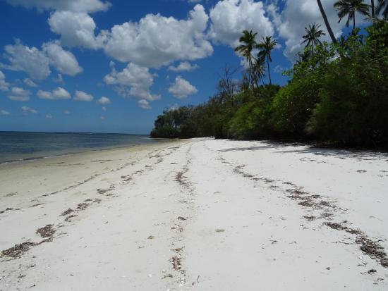 Ras Mbisi Lodge: yet more beaches