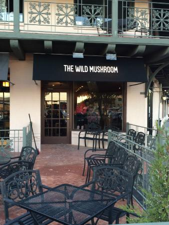 The Wild Mushroom Steakhouse and Lounge