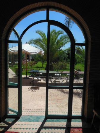 Villa Dar Mya Palmiers : vue sur le jardin