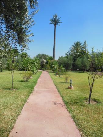 Villa Dar Mya Palmiers: allée du jardin vers l'entrée