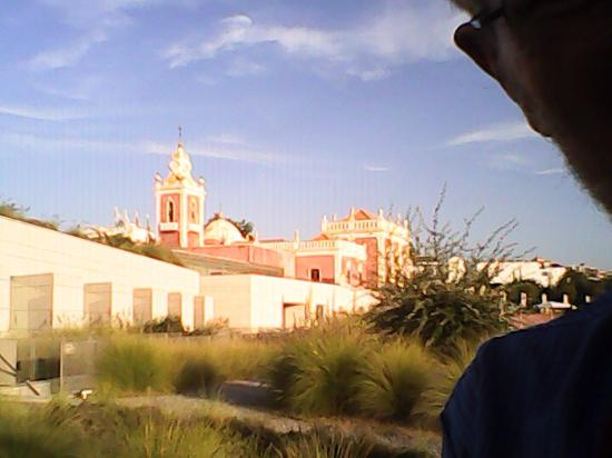 Casa de Estoi: Hotel and palace, view from the garden