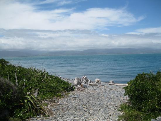 Kapiti Island Nature Tours: view towards mainland