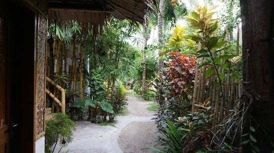 Bamboo Bungalow Rest Houses: The garden and entry