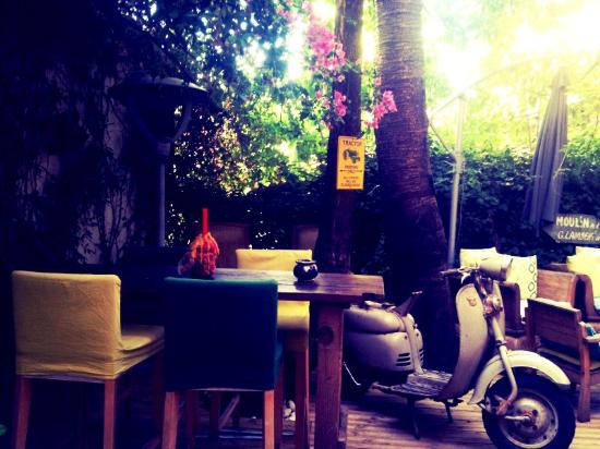 Foto di le jardin secret cannes tripadvisor for Jardin secret wine