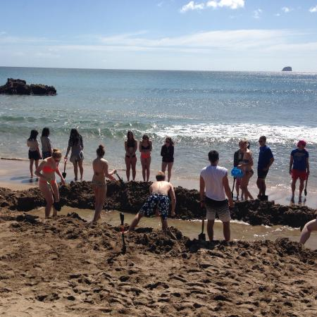 Coromandel Adventures - Day Tours: International cooperation - large hot pool digging