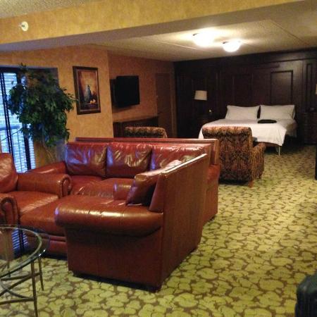 Hilton Garden Inn Rochester/Pittsford : Giant room