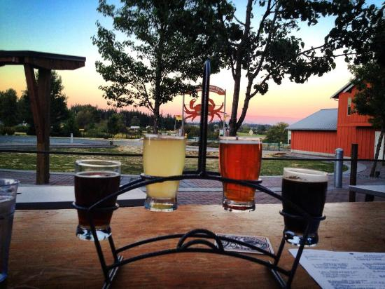 Collective On Tap : COT Patio View With a Flight