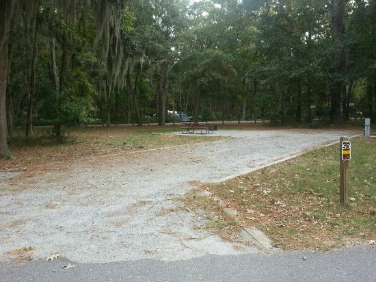Skidaway Island State Park: example of a back-in site