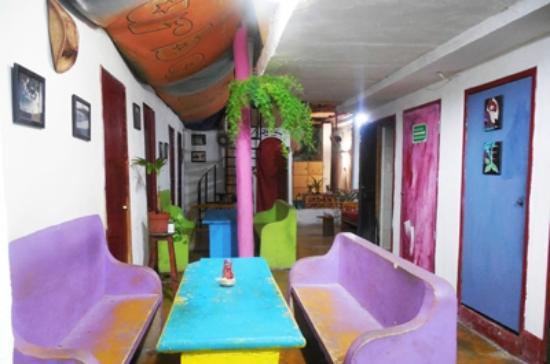 Xaman Eco-hostel: Comedor