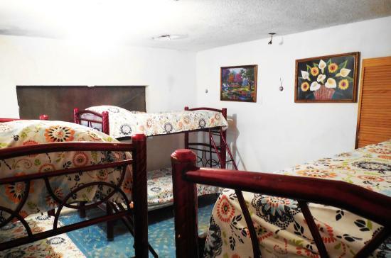 Xaman Eco-hostel : Habitación Dormitorio Femenino