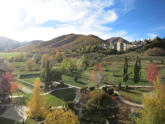 Zermatt Resort & Spa, A Trademark Collection Hotel: Вид на горы