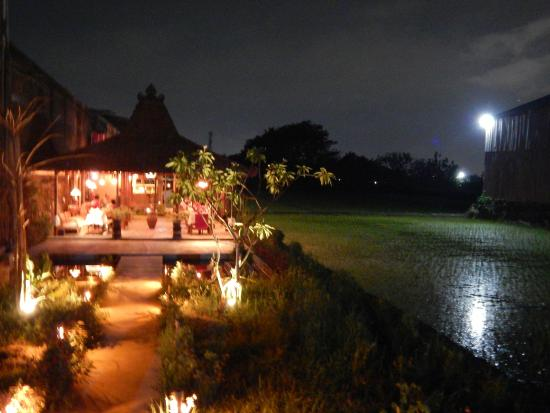 Sleman, Indonesië: welcome to Rosella for not only a diner but an evening out