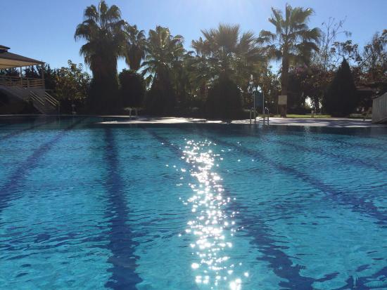 Lycus Beach Hotel: Poolen nov-14