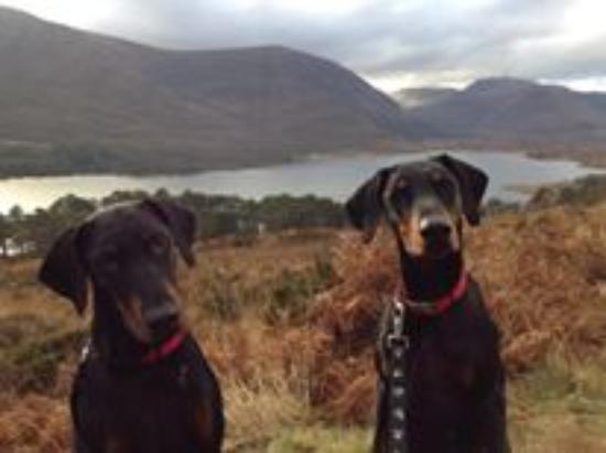 Glen Strathfarrar: Loch Monar