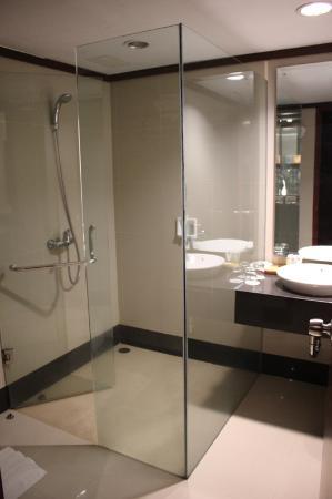 Hotel Pangeran : bath room