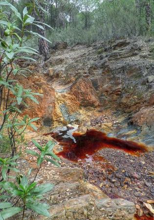 Fieldwork Riotinto: Nacimiento del Rio Tinto, paisaje