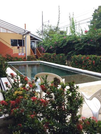 Hotel Samara Inn: Pool area