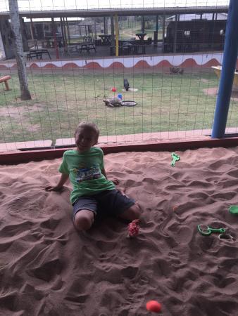 Flag Animal Farm : Fun in the indoor sandpit