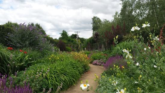 Alowyn Gardens Like In A Fairytale Garden