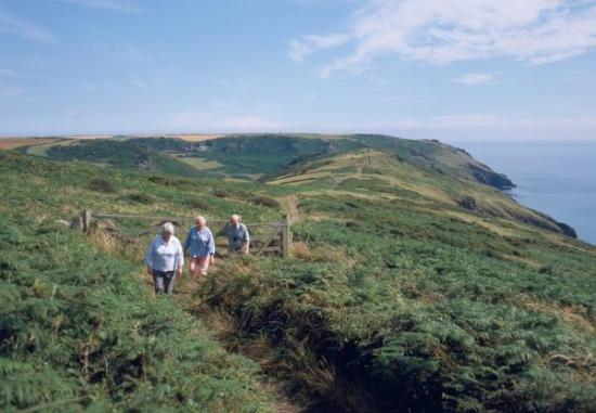 South West Coast Path - Bolberry Down