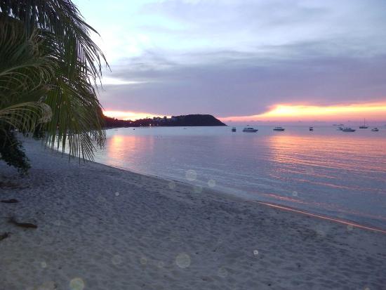 The Boardroom Beach Bungalows : Beach View