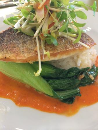 The Minerva Brasserie: Steamed fillet of sea bream, sticky rice, sweet and sour dressing