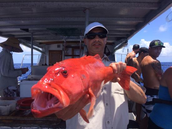 Cairns Reef Fishing: Nice coral trout