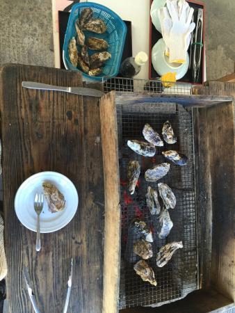 Tara-cho, Japan: ドライブルートは祐徳稲荷神社ー道の駅太良ー館船山楽園ー武雄温泉。目的の牡蠣小屋に行きます。1000円➕炭焼代200円です。4〜8㎝位。焼けたらパーンと灰が飛ぶので、エプロン必須。美しい有明海を