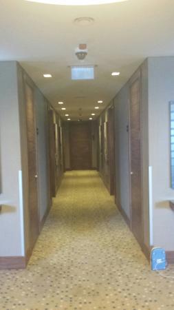 Hampton by Hilton Bursa: Rooms corridor