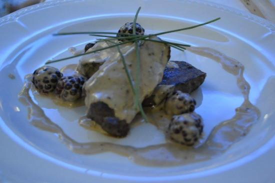 Ardshiel Hotel: Medallions of  Argyll Venison with a Bramble and Brandy Cream Sauce.