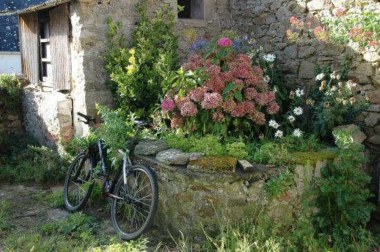 Noz Vat Ar Mor: Vista giardinetto esterno