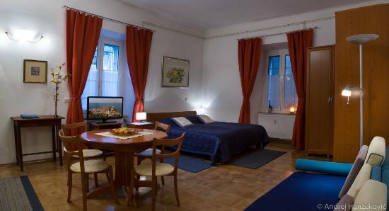 Central Apartments Tour As