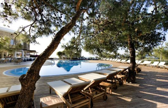Club Med Bodrum Palmiye: Swimming pool