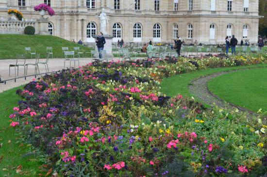 Paris, França: Flowers in the Luxembourg Garden