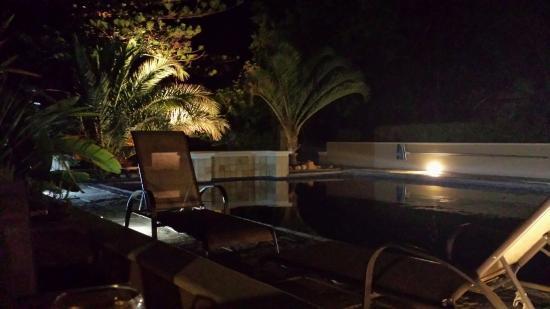 Somerset Villa Guesthouse: Der wunderschöne Pool bei Nacht