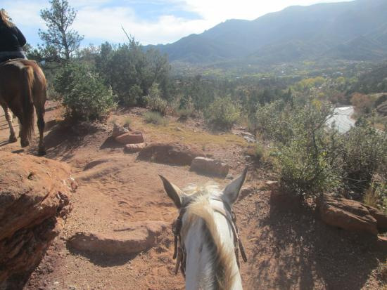 Academy Riding Stables: A little rocky