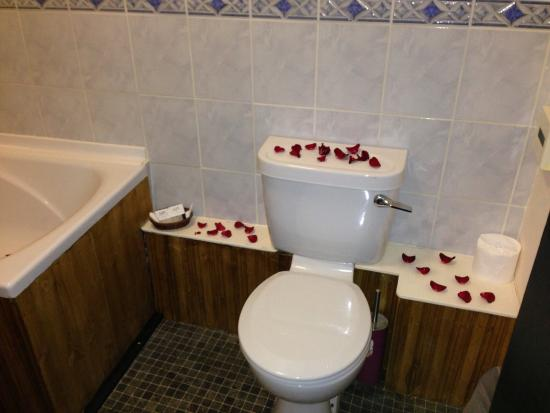 The Tudor House: Even toilet smells of roses!!