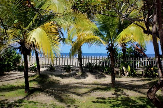 Hotel Las Américas Casa de Playa: Vista da praia