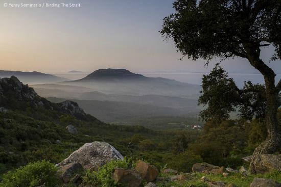 Birding The Strait: Landscape from Sierra de la Plata, Strait of Gibraltar