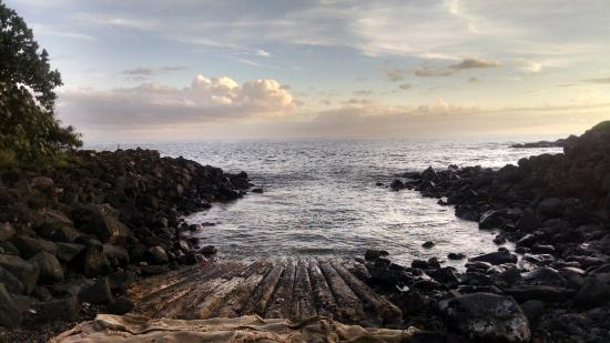 Epic Diving Adventures Kauai Hi Top Tips Before You Go Tripadvisor