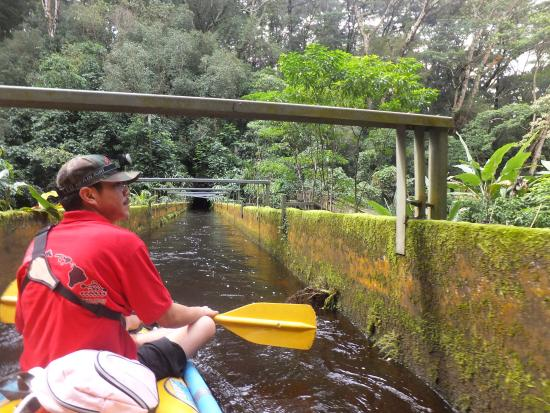 Kohala Ditch Adventures: fearless guide