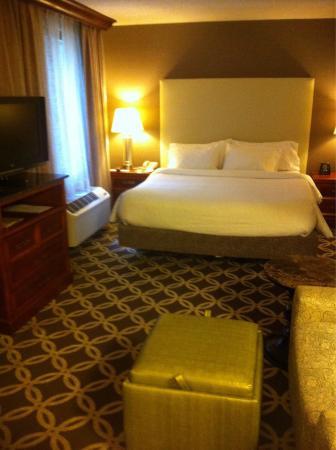 Hilton Garden Inn Washington, DC Downtown: King bed in large room!
