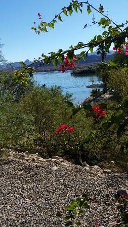 Islander Resort: View from rv office.
