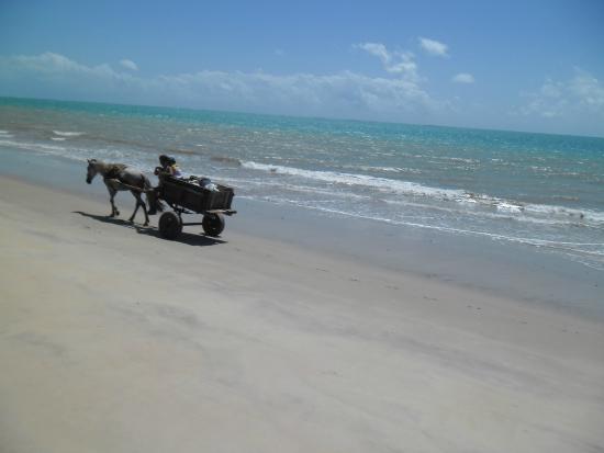 Barra de Santo Antonio, AL: Praia