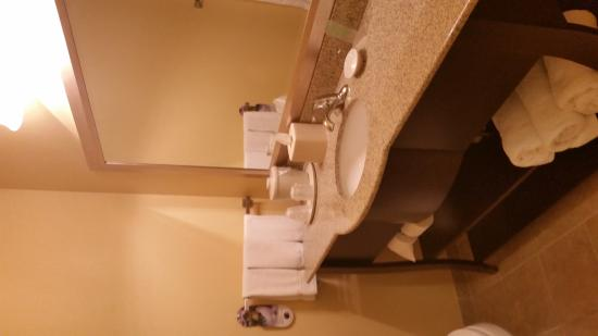 Holiday Inn Express & Suites Denver North: Bathroom