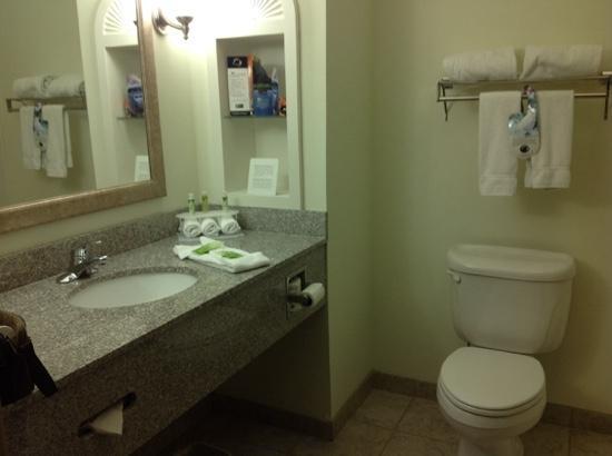 Holiday Inn Express Hotel & Suites - Gadsden: bathroom