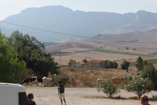 Agriturismo Sant'Agata : Serene surrounds